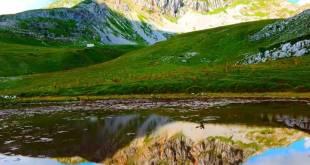 Program javne rasprave, Nacrt Lokalnog akcionog plana za biodiverzitet opštine Danilovgrad
