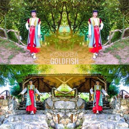 goldfishmontenegro_20200515_4