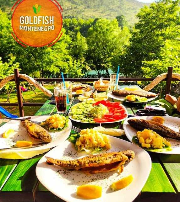 goldfishmontenegro_20200626_5