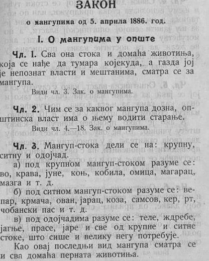 Zakon o mangupu i bitangi
