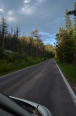 fun Black Hill roads