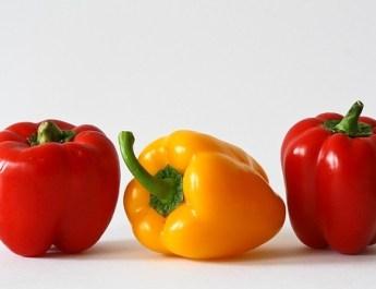 Pflanzenstoffe