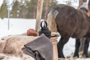 Det vart en lang god hvil på både hest og kusk under Martnan før Martnan på Drevsjø . Vi håper på like mye liv og god stemning neste år når døm forhåpentligvis kjem forbi her !