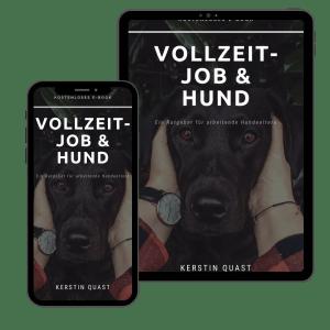 e-book-kostenlos-gratis-hund-vollzeitjob-berufstaetig-karriere