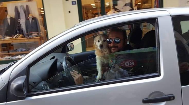 Πάμε στοίχημα; Ο Πλουμιστός ή ο σκύλος οδηγεί καλύτερα;
