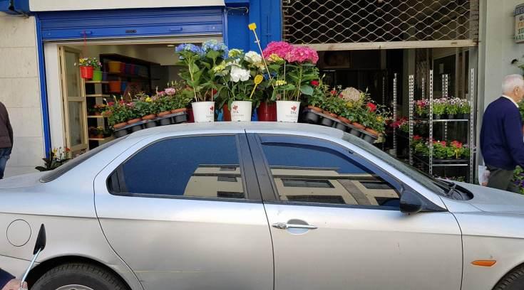 Το είδαμε και αυτό! Που θα πάνε βόλτα τα λουλούδια;