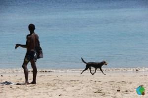 Moçambic - ultim dia del viatge a 29-imp