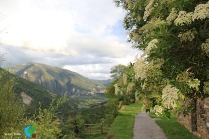Pirineu d'Osca - 21-06-2103 292-imp