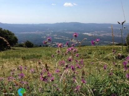 Sortida Montseny - juliol 2013 1-imp