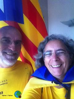Diada Nacional de Catalunya 2013 - 1-imp