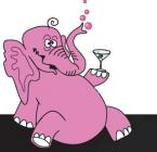 Elefant 9