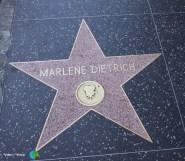 Los Angeles - Hollywood Boulevard - 5-imp