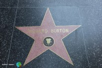 Los Angeles - Hollywood Boulevard - 8-imp