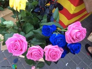 Sant Jordi 2.014 - 088-imp