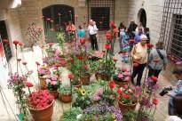 Girona - Temps de Flors 2014 zi3-imp