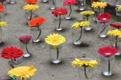 Girona - Temps de Flors 2014 zzb1-imp