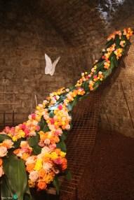 Girona - Temps de Flors 2014 zzj1-imp