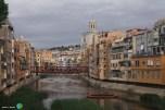 Girona - Temps de Flors 2014 zzt1-imp