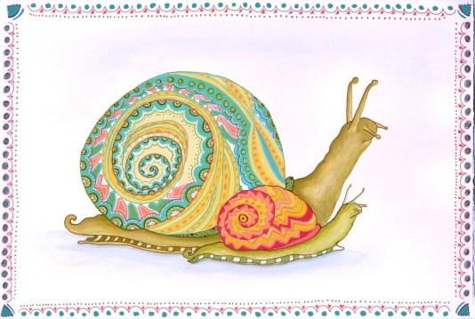 snail Toronto