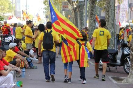 Diada Nacional de Catalunya - Voltar i Voltar - 11-imp