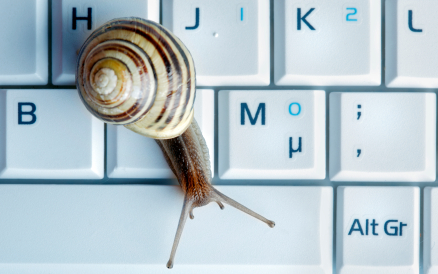 Close up of a snail on a laptop