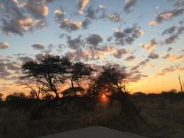 céu de savana