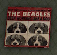 The Beagles - Been Working Like A Dog