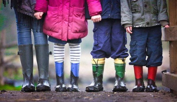 Working with Children Check Employer Penalties ...