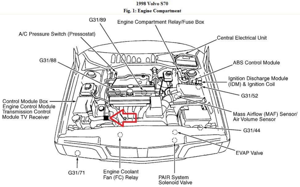Accordion Parts Diagram