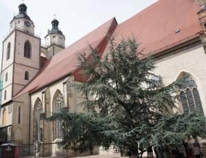 Lutherstadt Wittenberg Stadtkirche