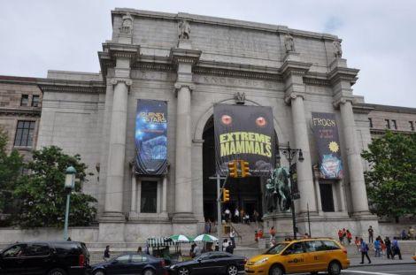 """O filme """"Uma noite no museu"""" é bobo mas dá uma boa ideia do que há em exposição no Museu de História Natural"""