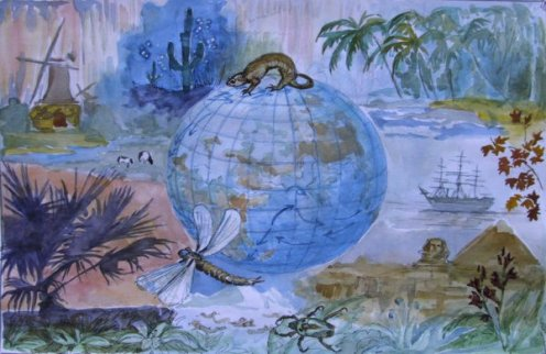 Картинки по Охране Природы Детские