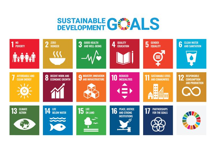 SDG sustainable development goals