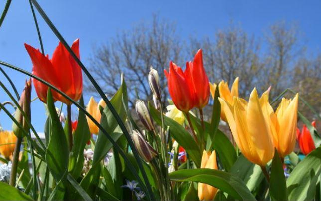 Heerlijk zonnig begin van het weekend