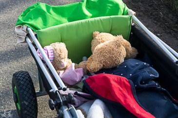 Statt Kindern transportieren wir heute die Bären im Bollerwagen