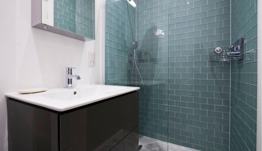 0736-bathroom-west-hampstead-garden-apartment-vorbild-architecture-CS1