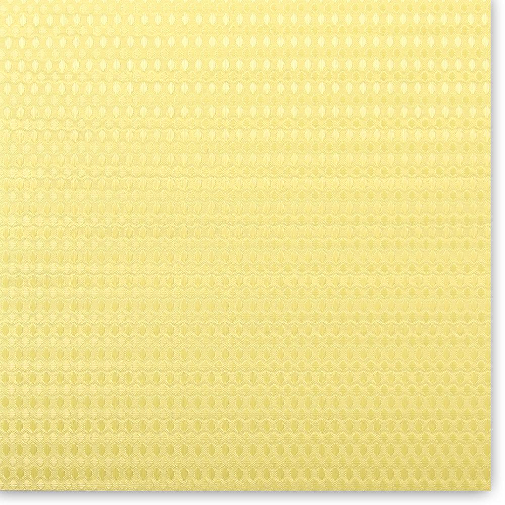 JONES-1016 (lemon) 1