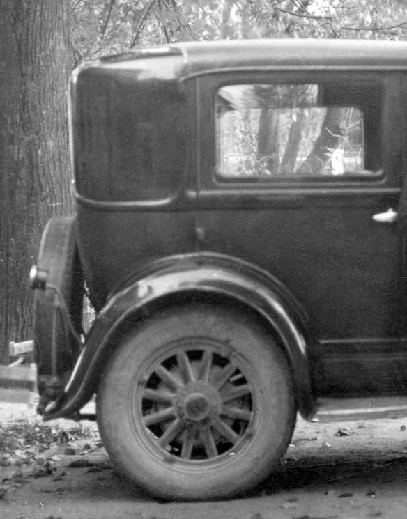 Whippet_1929_Breitenfurt_10-1934_Galerie2