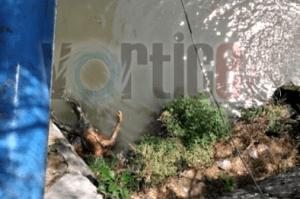 Hallan cadáver en el río Sabinal; presenta signos de tortura y un balazo en el pecho