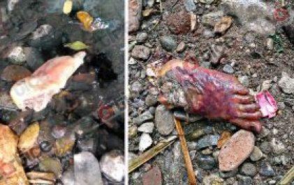 mutilado-tuxtla