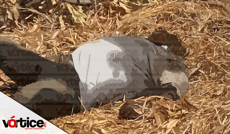 Hallan cadáver putrefacto a orillas del río Sabinal en Tuxtla