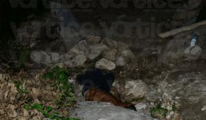PC atiende a quincuagenario y muere horas después tras cuchilladas