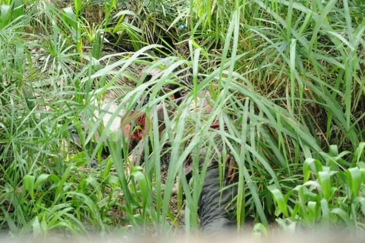 Encuentran osamenta a orillas del río Sabinal
