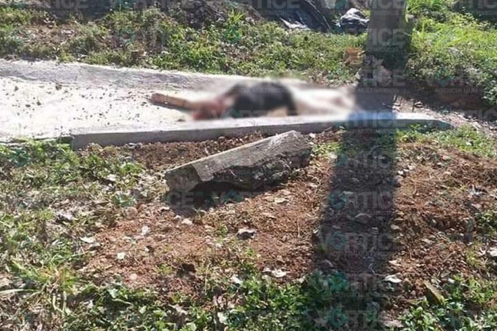 ¡Feminicidio en Huehuetán! Hallan cadáver de joven a orilla de carretera