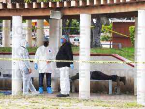 Hallan cadáver tendido en una banca del parque Bicentenario