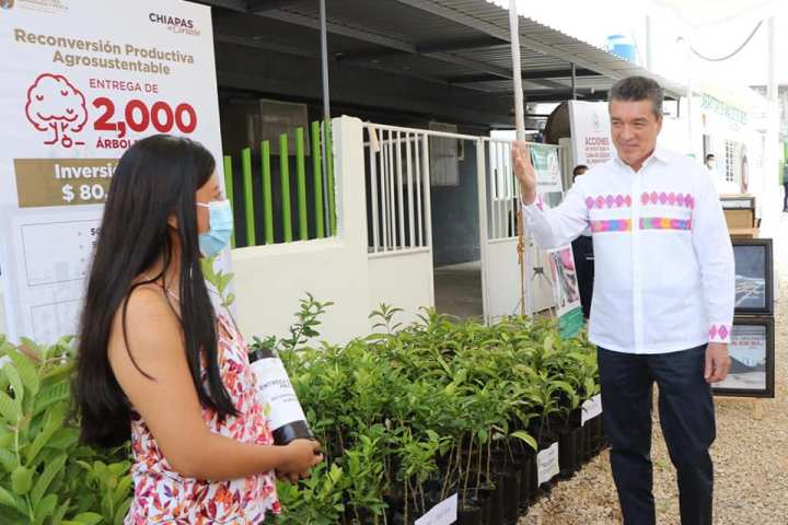 Entrega Rutilio Escandón apoyos a productores de caña e inaugura Laboratorio de Análisis de Suelos