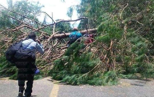 Se enfrentan transportistas de la Comach y bloqueadores en Oxchuc