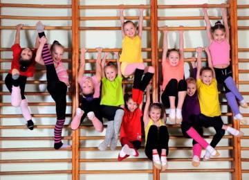 Гимнастика на шведской стенке