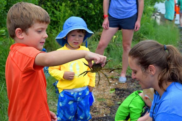 Дети в походе поймали краба