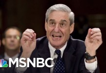 President Trump Says He 'Would Like To' Meet With Robert Mueller. Now What? | MTP Daily | MSNBC